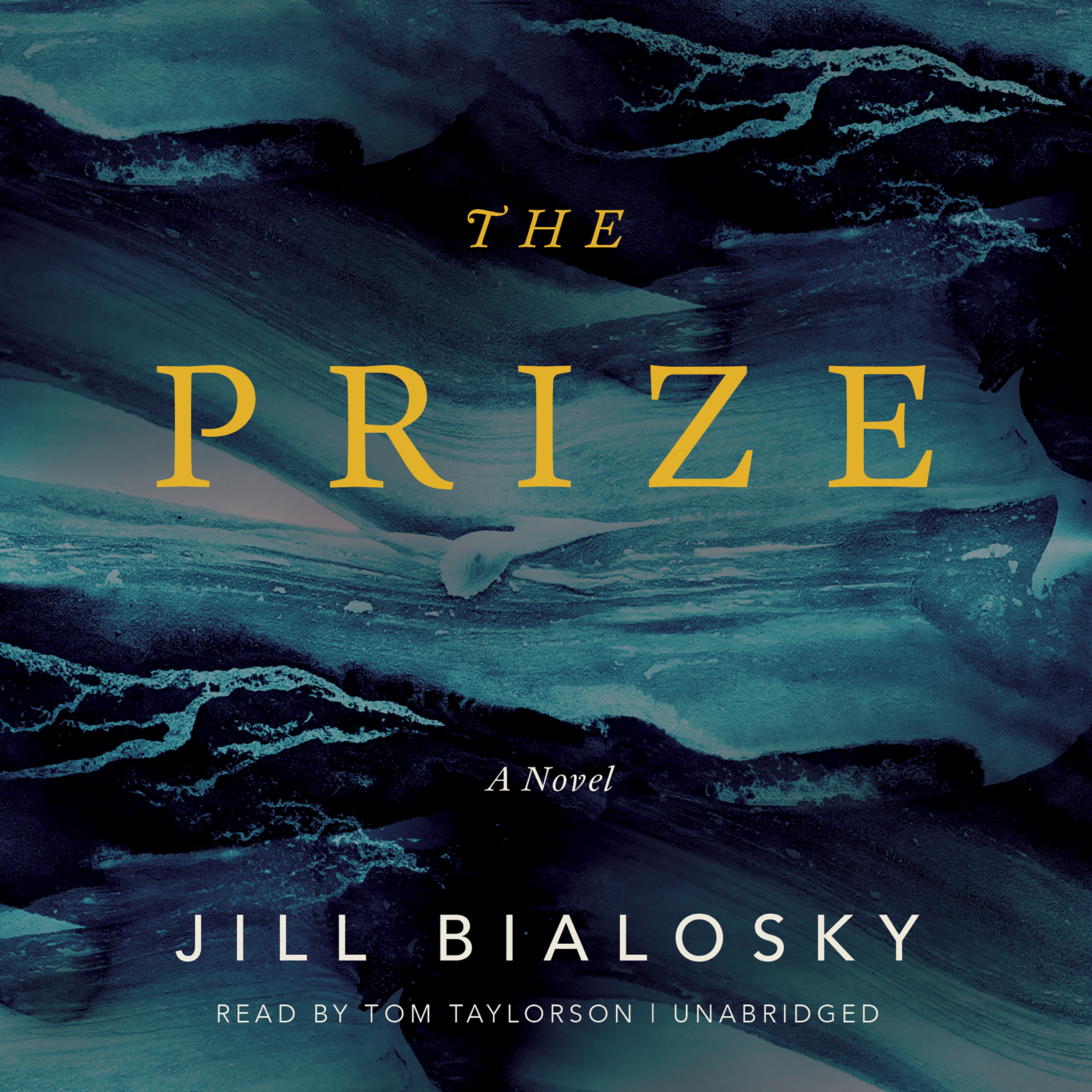Printable The Prize: A Novel Audiobook Cover Art