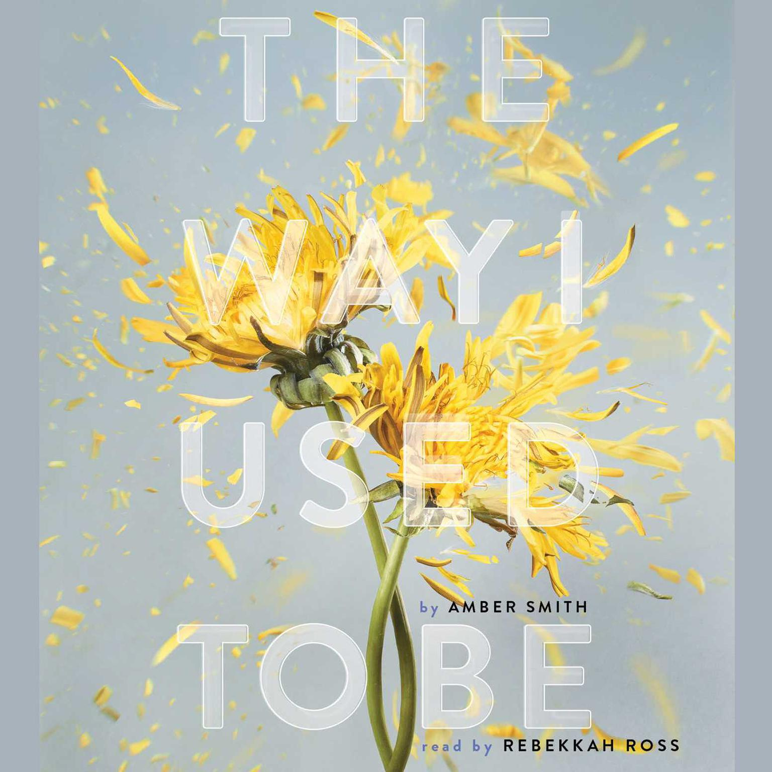 Printable The Way I Used to Be Audiobook Cover Art