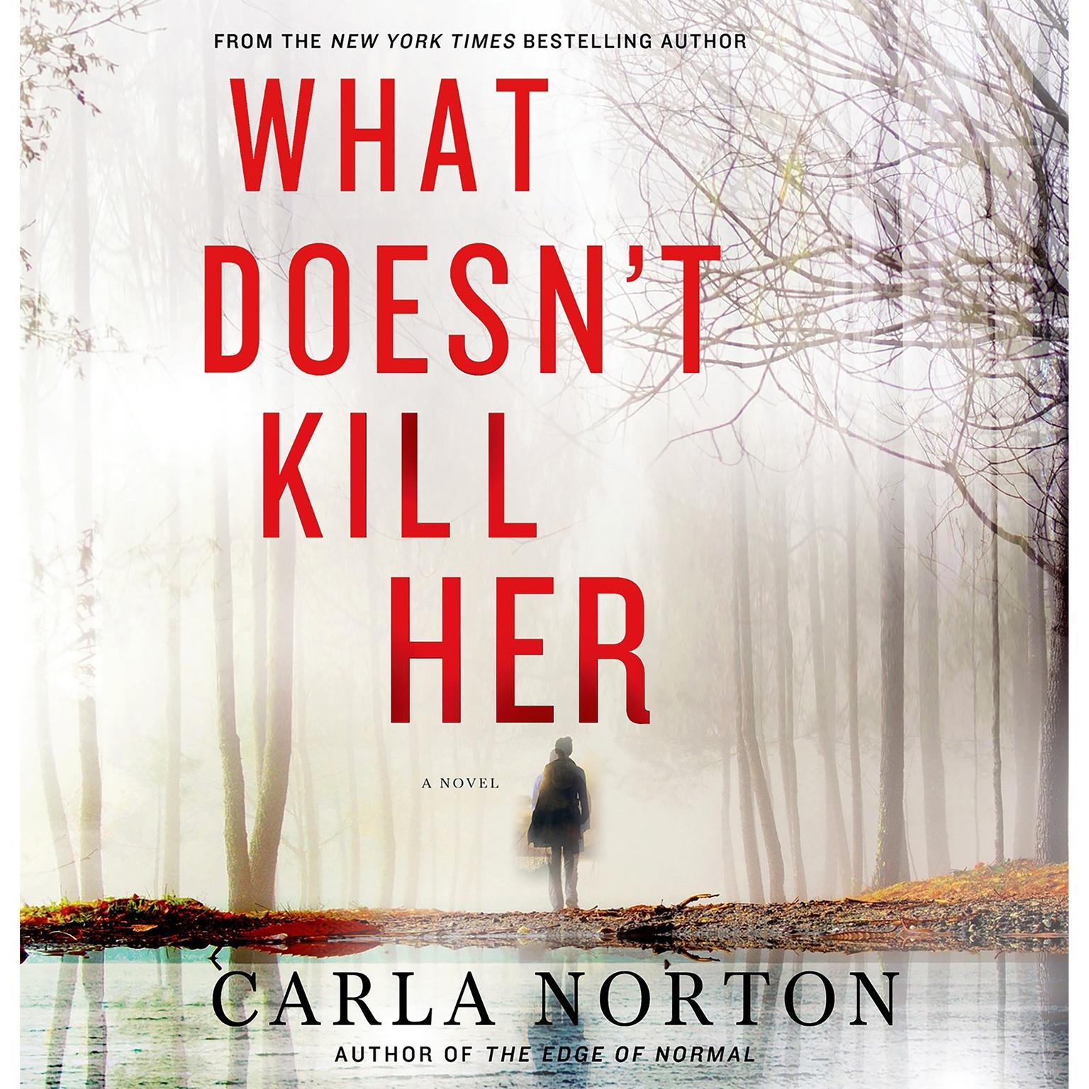 Printable What Doesn't Kill Her: A Novel Audiobook Cover Art