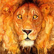The Lion and the Mouse Audiobook, by Jerry Pinkney