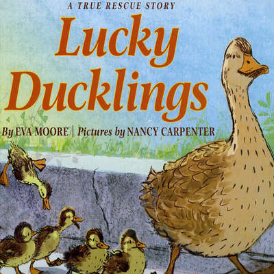 Lucky Ducklings Audiobook, by Eva Moore