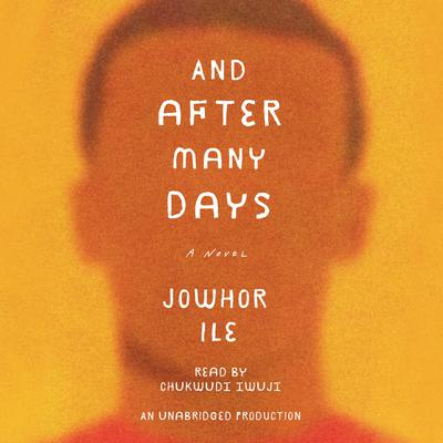 And After Many Days: A Novel Audiobook, by Jowhor Ile