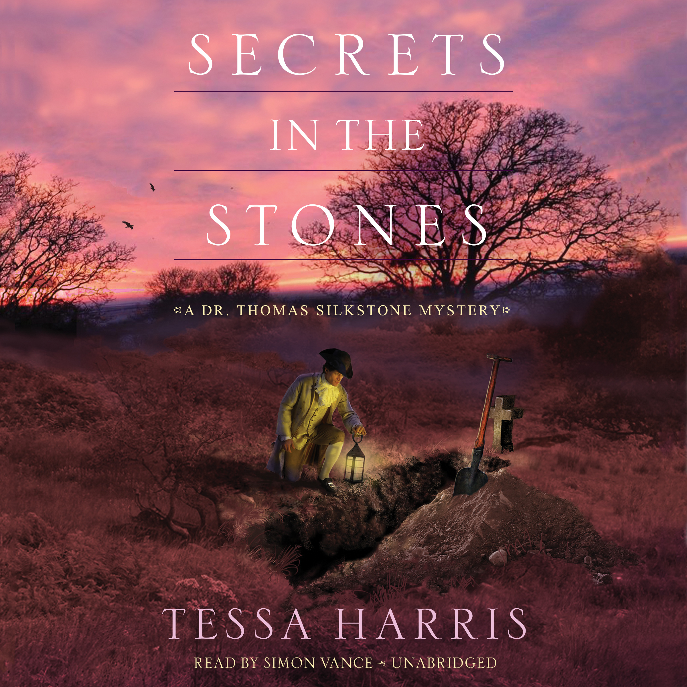 Printable Secrets in the Stones: A Dr. Thomas Silkstone Mystery Audiobook Cover Art
