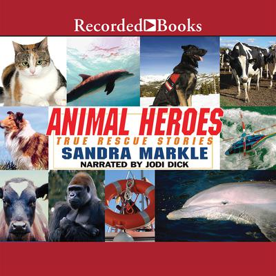 Animal Heroes: True Rescue Stories Audiobook, by Sandra Markle