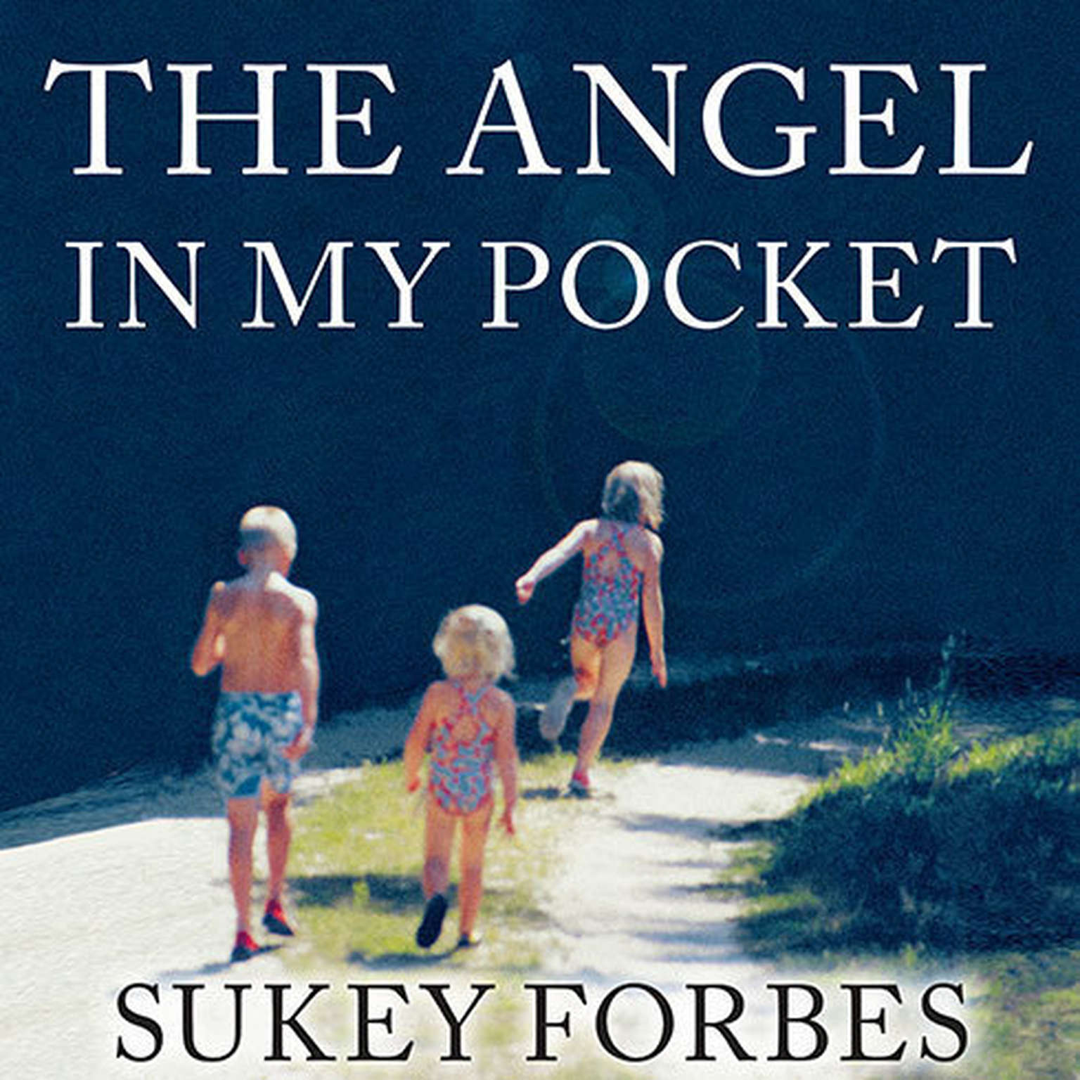 Printable The Angel in My Pocket: A Story of Love, Loss, and Life after Death Audiobook Cover Art