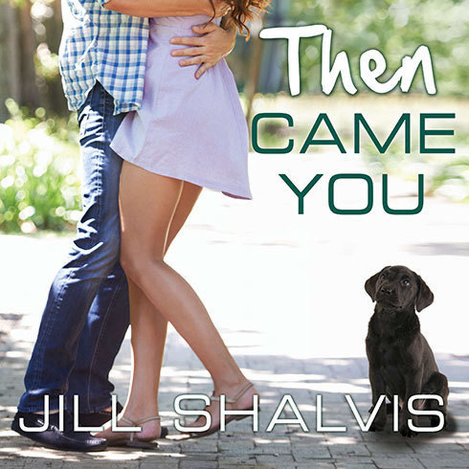 Printable Then Came You Audiobook Cover Art