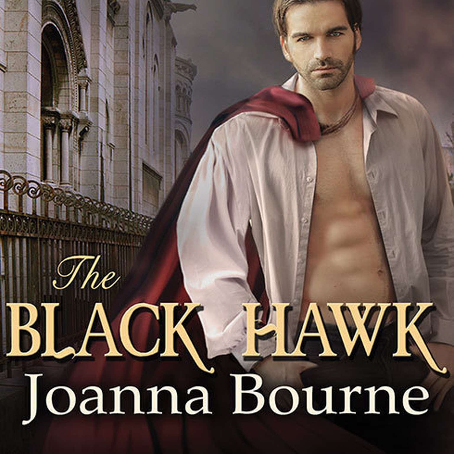 Printable The Black Hawk Audiobook Cover Art