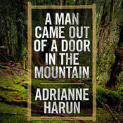 A Man Came Out of a Door in the Mountain, by Adrianne Harun