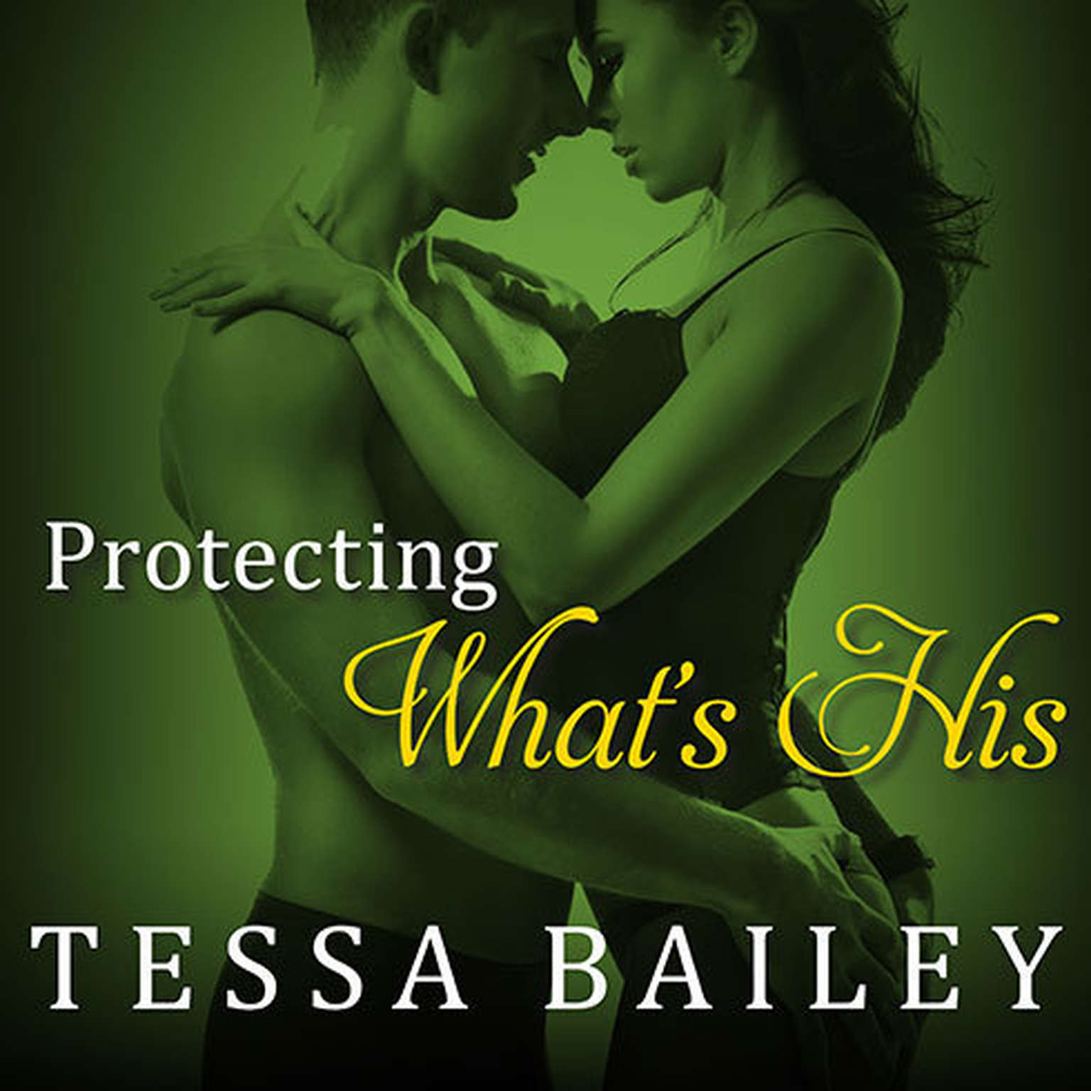 Printable Protecting What's His Audiobook Cover Art