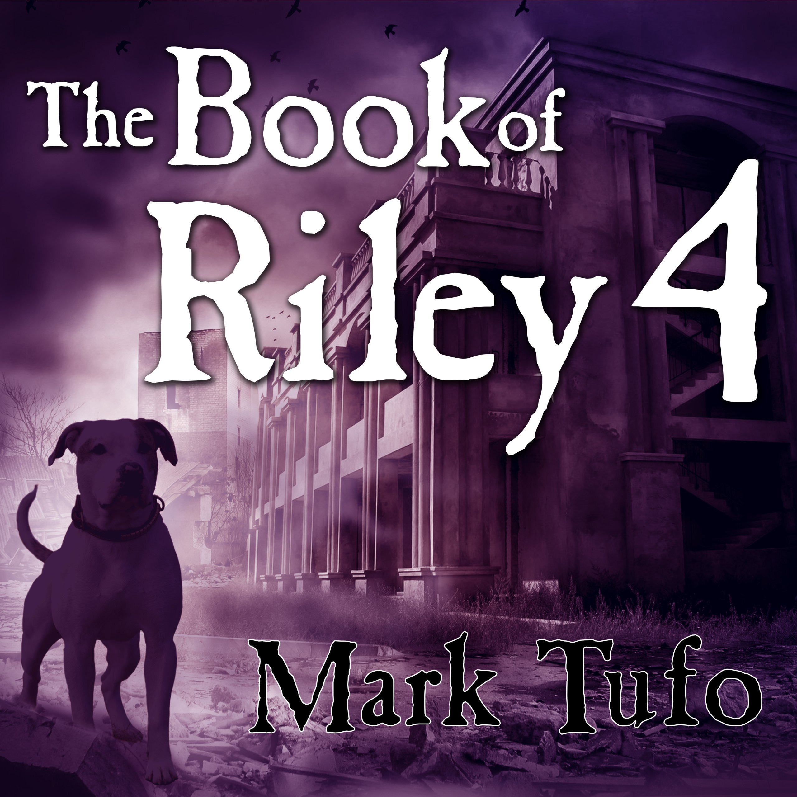 Printable The Book of Riley 4: A Zombie Tale Audiobook Cover Art