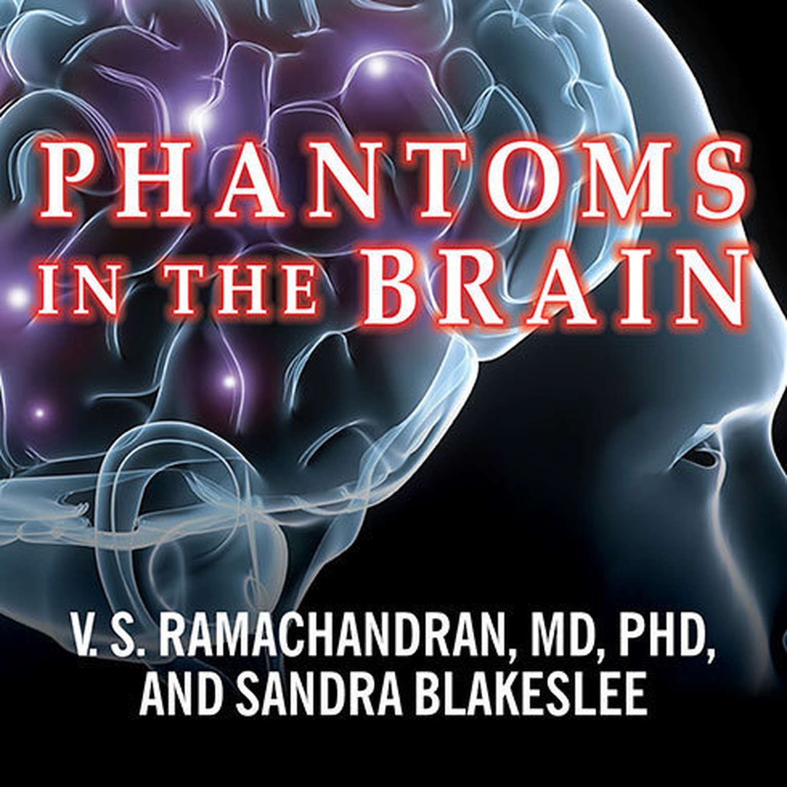 Printable Phantoms in the Brain: Probing the Mysteries of the Human Mind Audiobook Cover Art