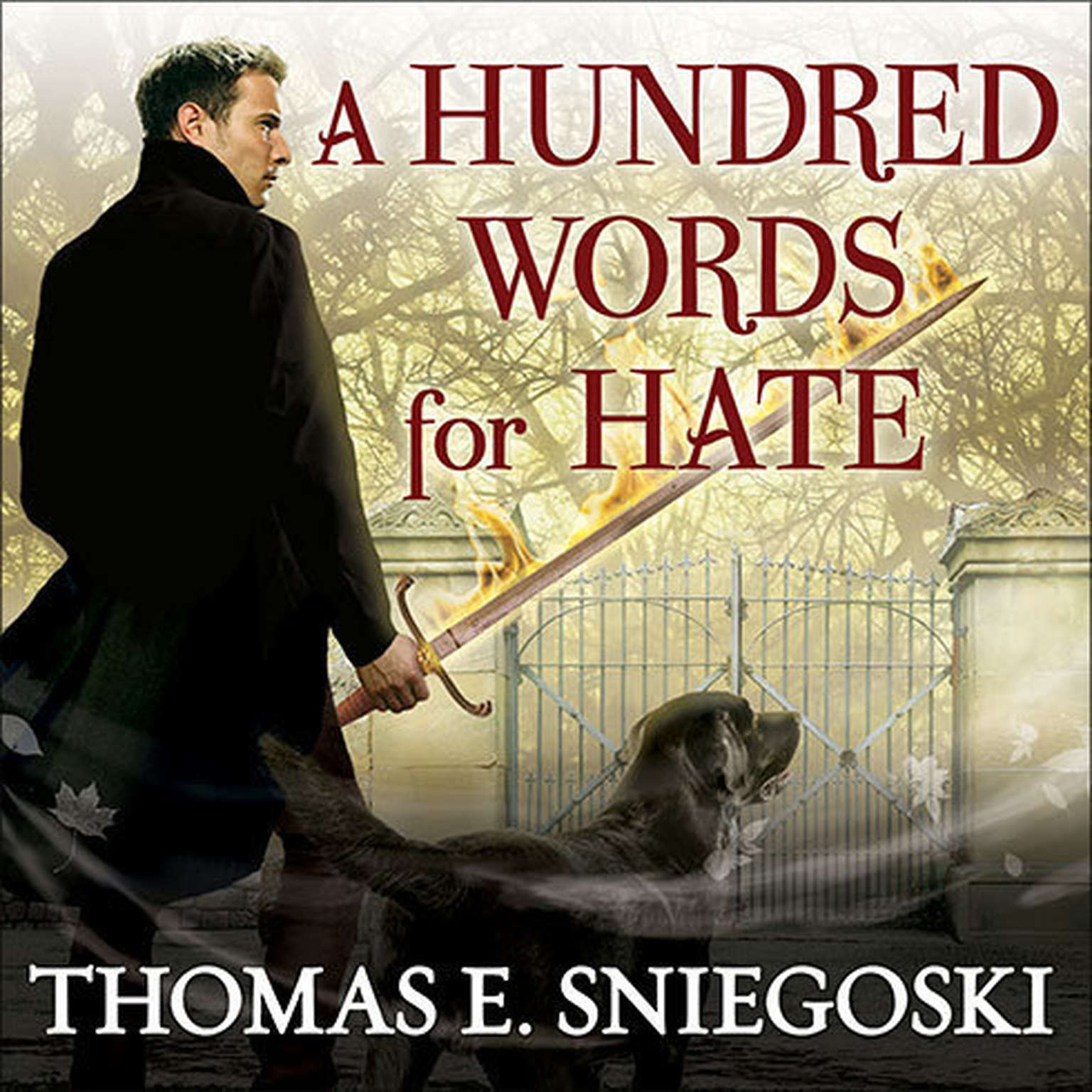 Printable A Hundred Words for Hate: A Remy Chandler Novel Audiobook Cover Art