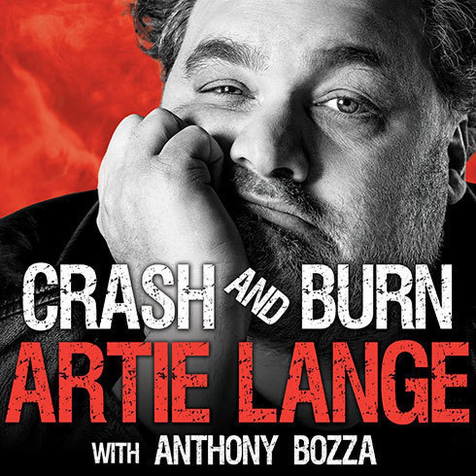 Printable Crash and Burn Audiobook Cover Art