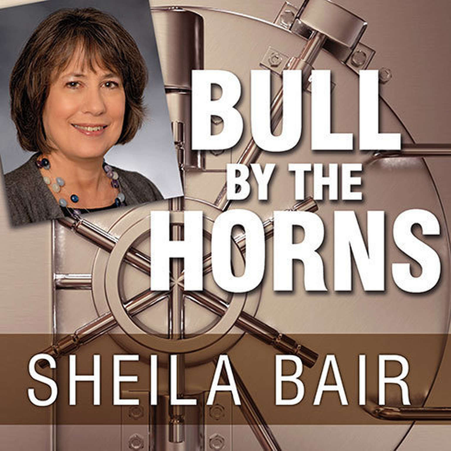 Printable Bull by the Horns: Fighting to Save Main Street from Wall Street and Wall Street from Itself Audiobook Cover Art