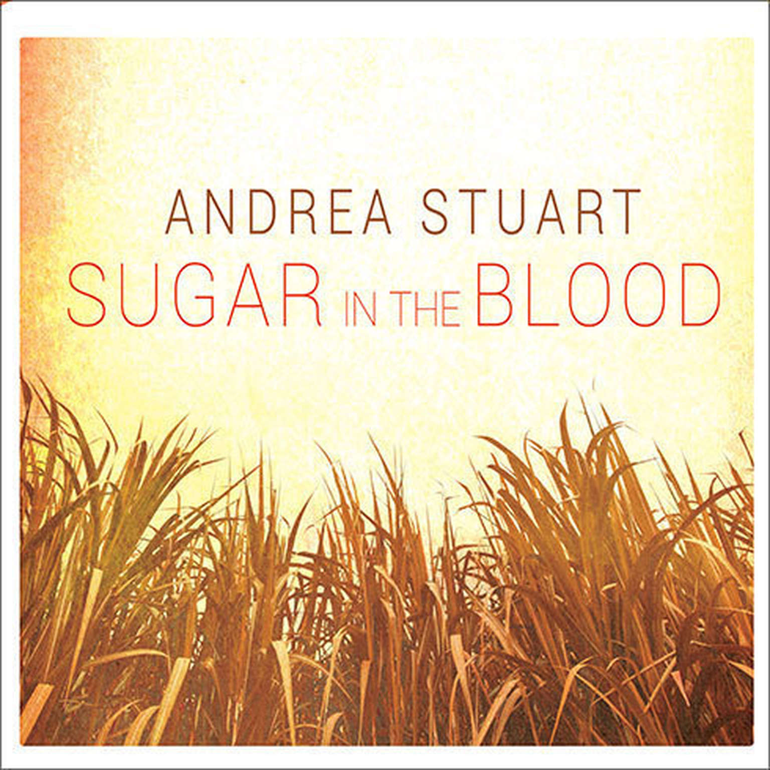 Printable Sugar in the Blood: A Family's Story of Slavery and Empire Audiobook Cover Art