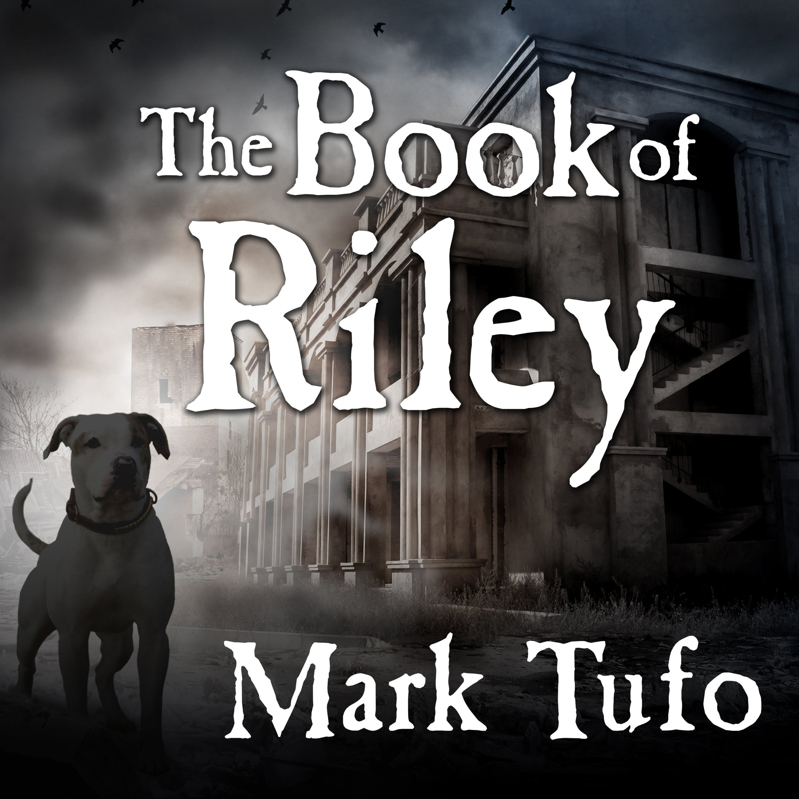 Printable The Book of Riley: PT 1: My Name is Riley Audiobook Cover Art