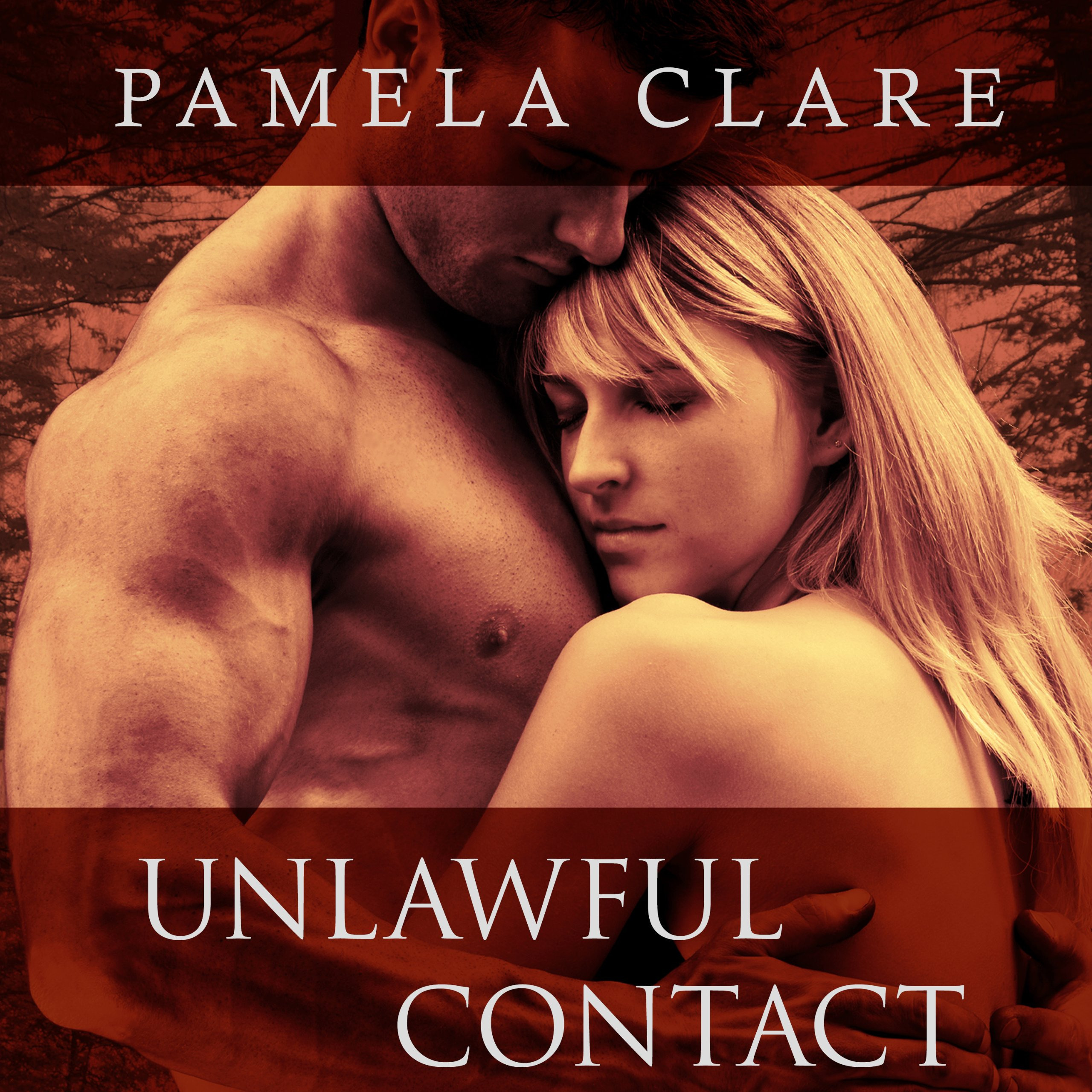 Printable Unlawful Contact Audiobook Cover Art