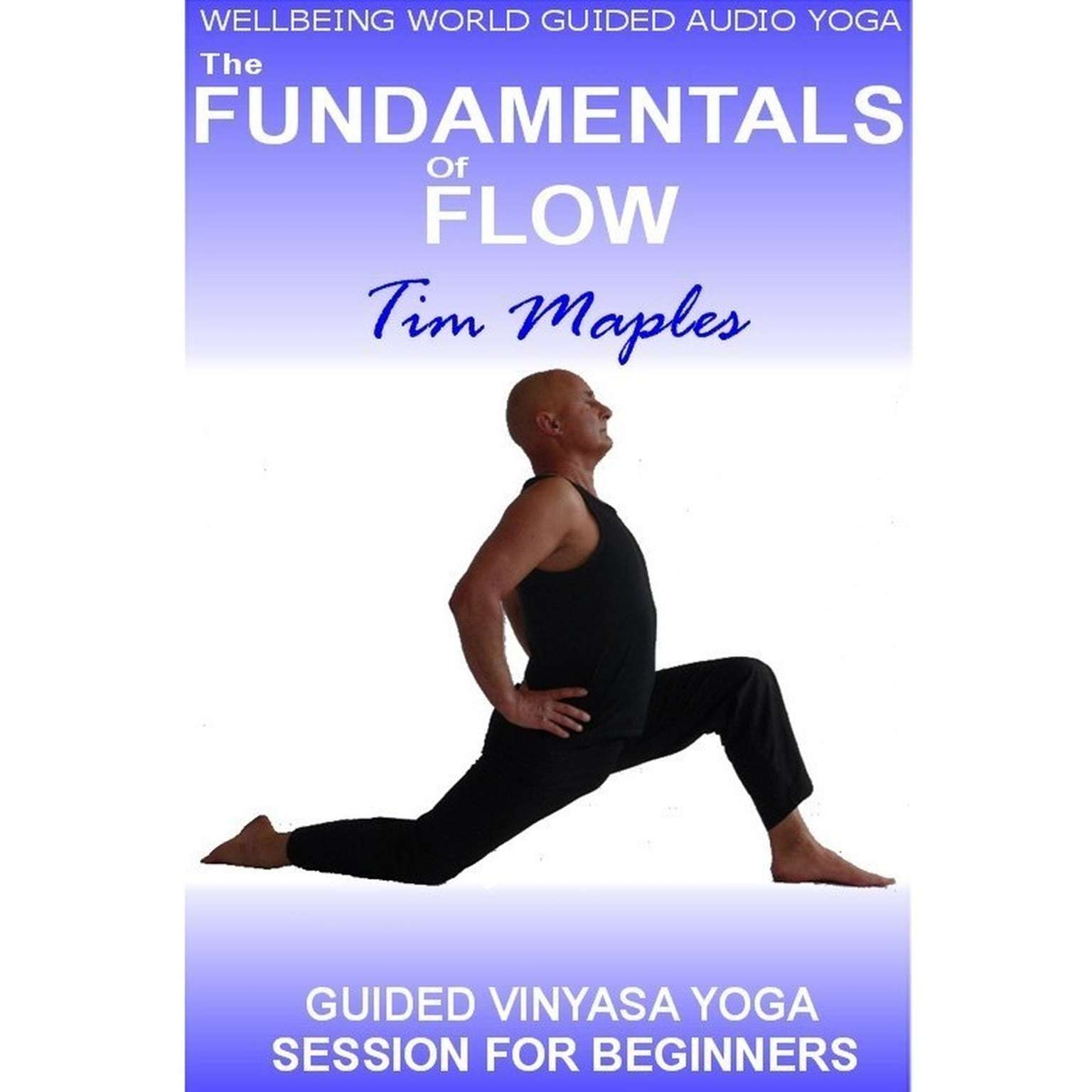 Printable The Fundamentals of Flow Audiobook Cover Art