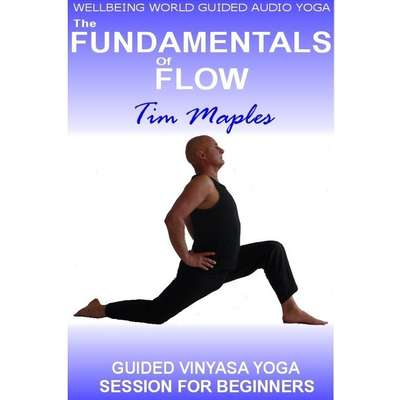 The Fundamentals of Flow Audiobook, by Tim Maples