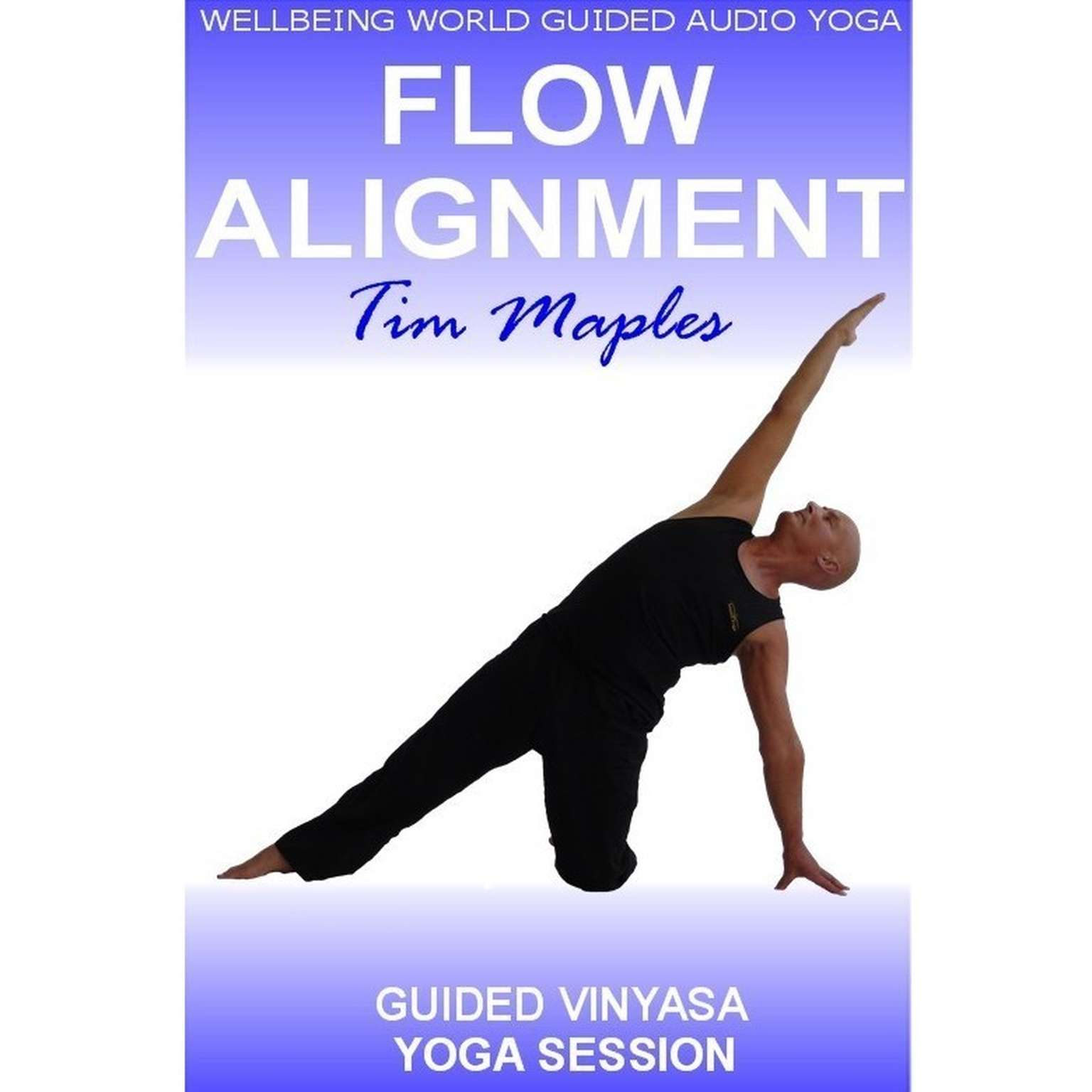 Printable Flow Alignment Audiobook Cover Art
