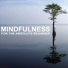 Mindfulness for the Absolute Beginner Audiobook, by Sue Fuller