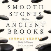 Smooth Stones Taken from Ancient Brooks Audiobook, by Thomas Brooks
