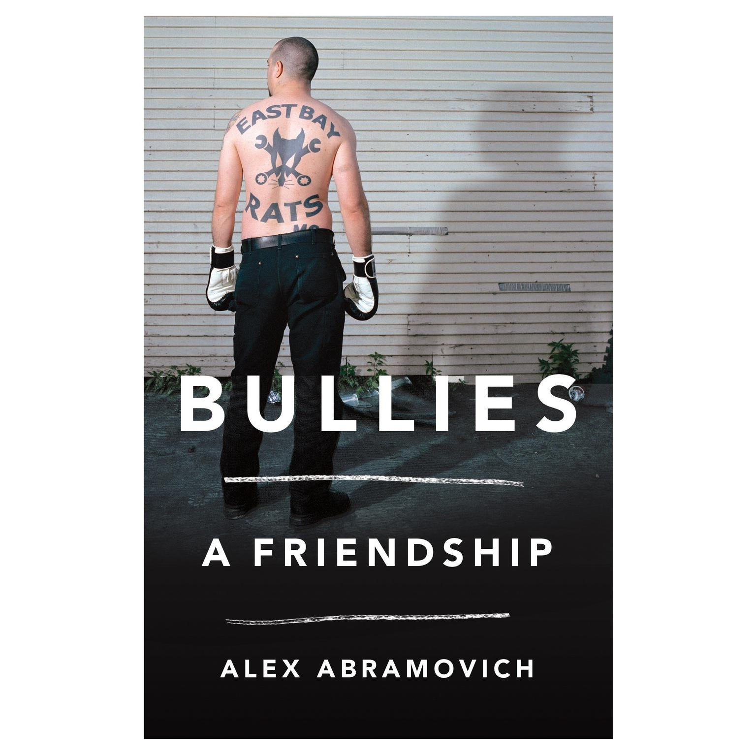 Printable Bullies: A Friendship Audiobook Cover Art