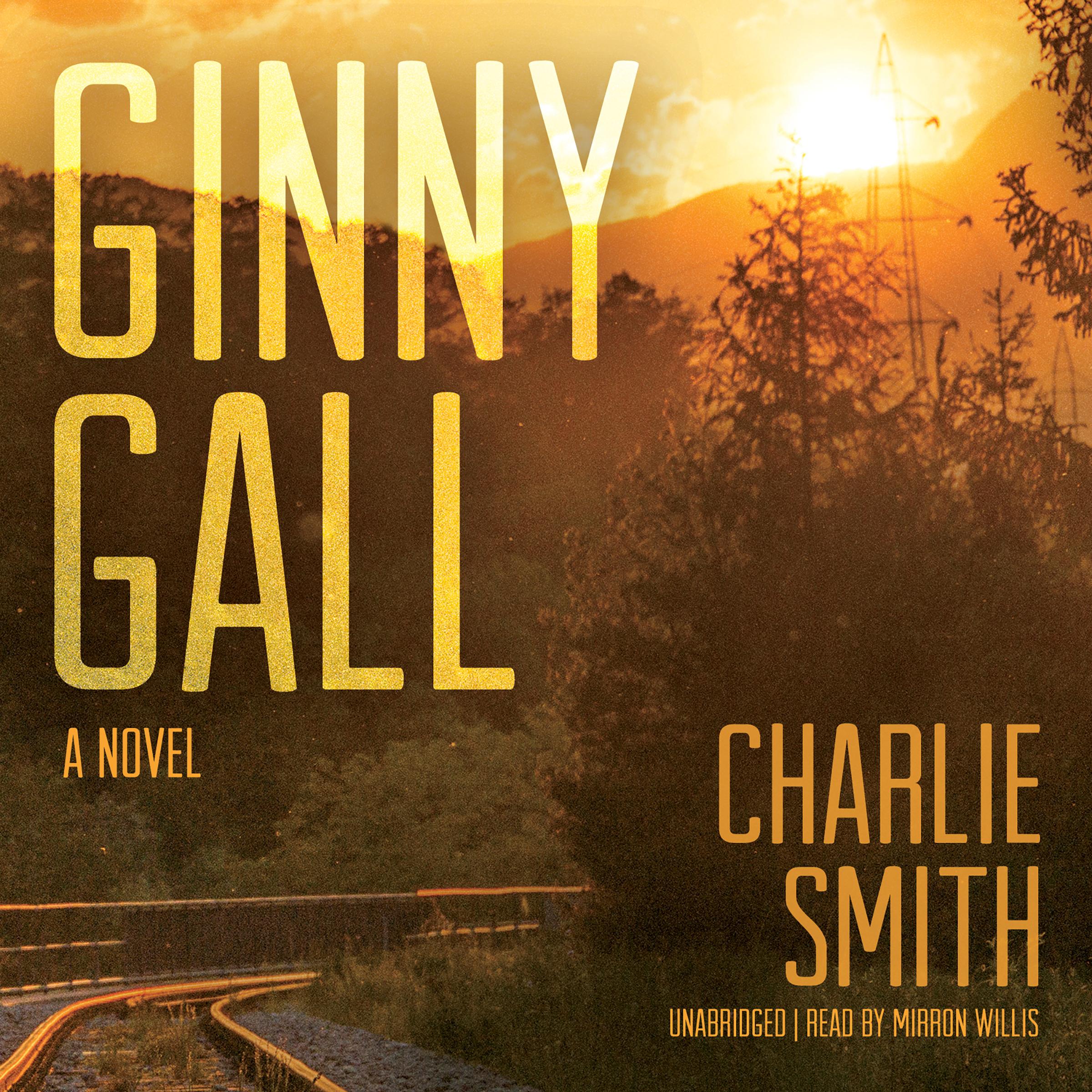 Printable Ginny Gall: A Novel Audiobook Cover Art