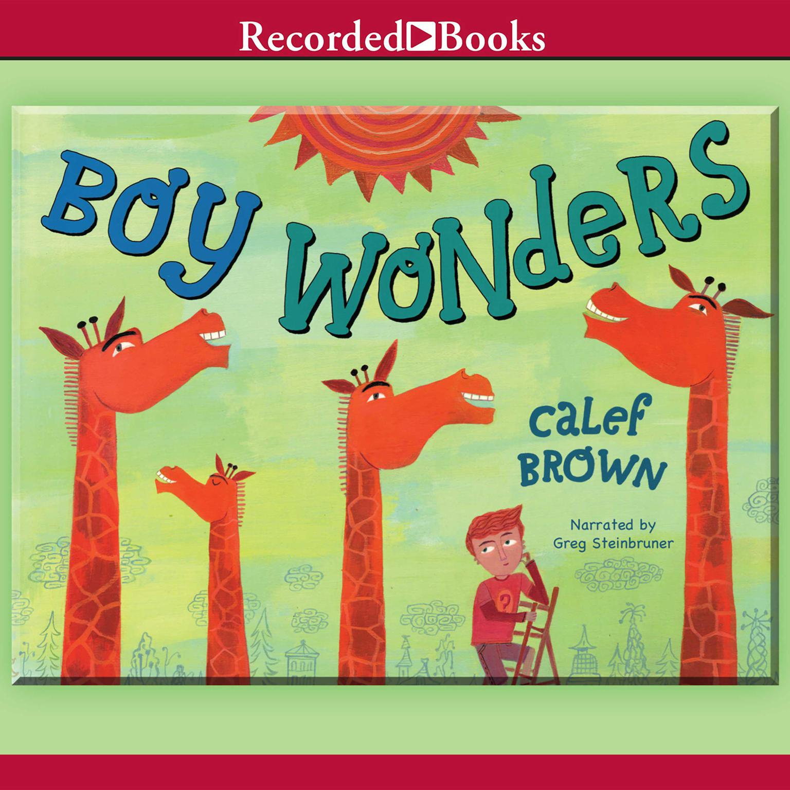 Printable Boy Wonders Audiobook Cover Art