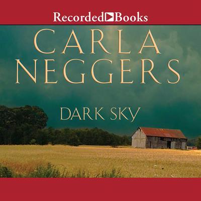 Dark Sky Audiobook, by Carla Neggers