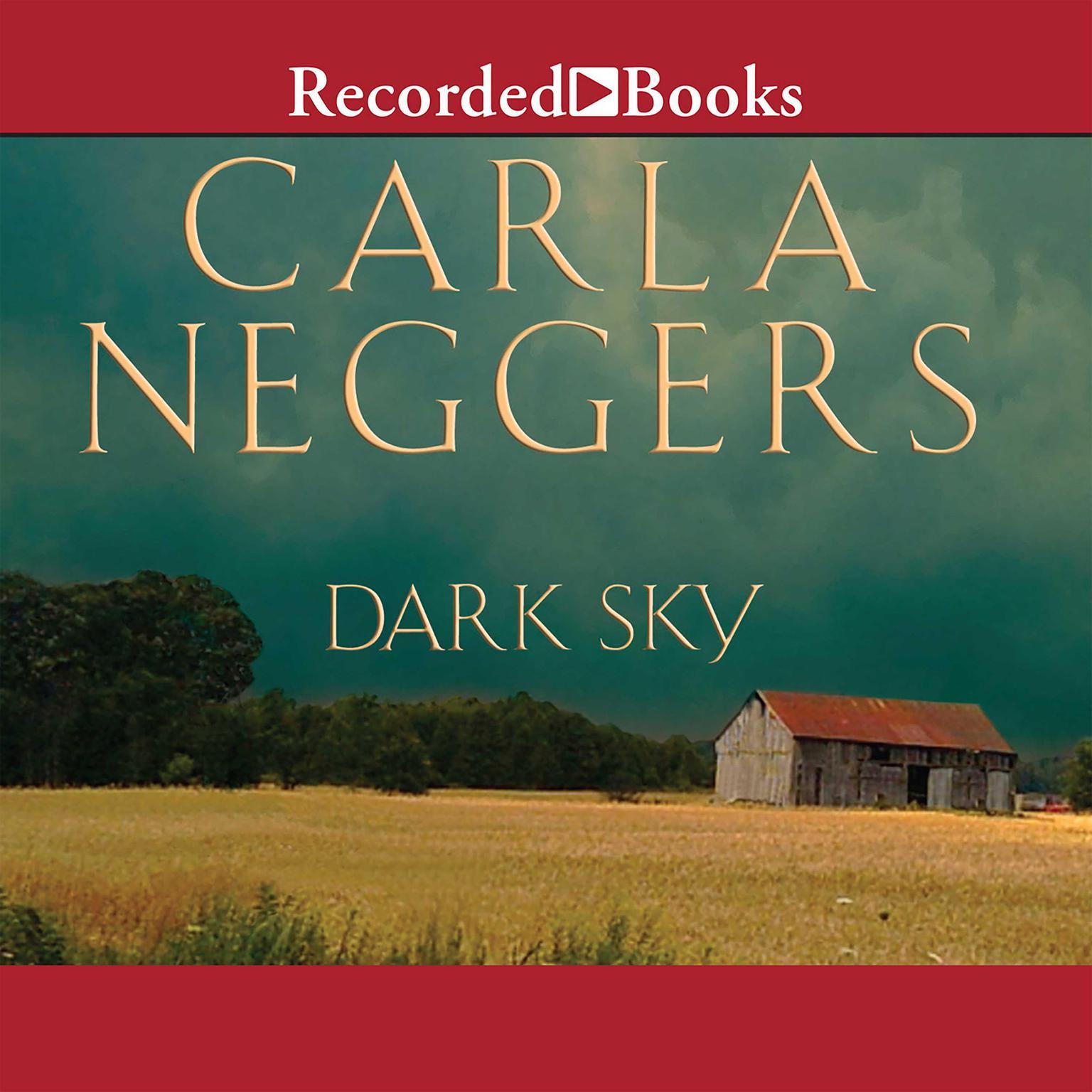 Printable Dark Sky Audiobook Cover Art