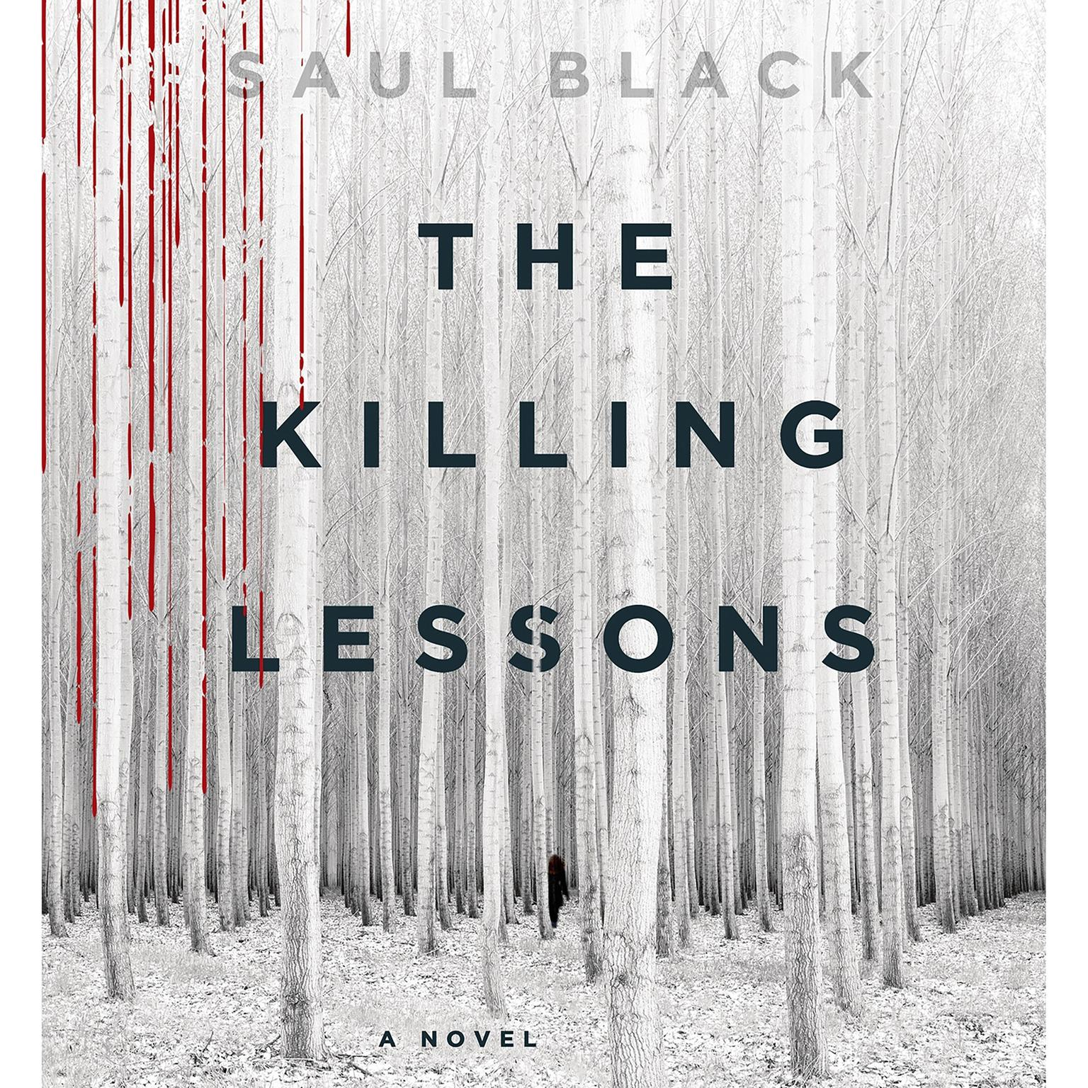 Printable The Killing Lessons: A Novel Audiobook Cover Art