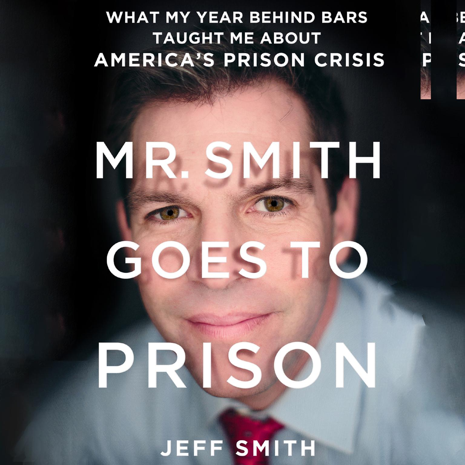Printable Mr. Smith Goes to Prison: What My Year Behind Bars Taught Me About America's Prison Crisis Audiobook Cover Art