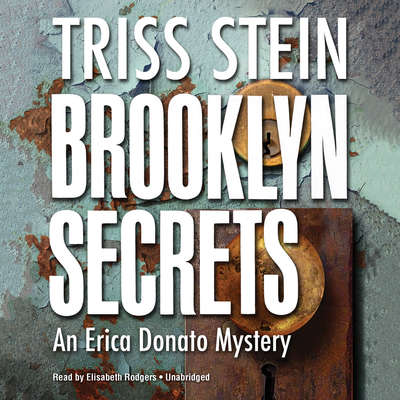 Brooklyn Secrets: An Erica Donato Mystery Audiobook, by Triss Stein