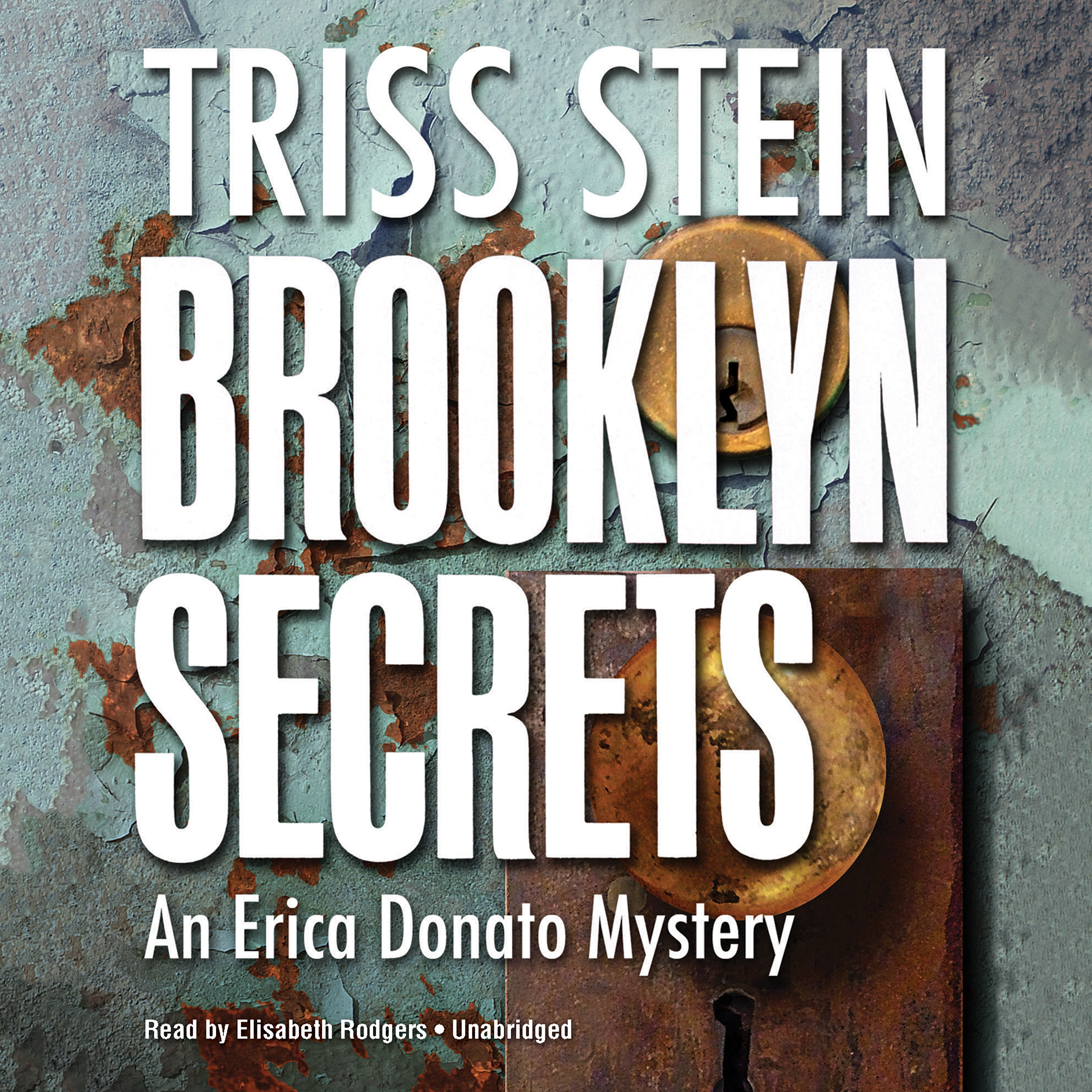 Printable Brooklyn Secrets: An Erica Donato Mystery Audiobook Cover Art
