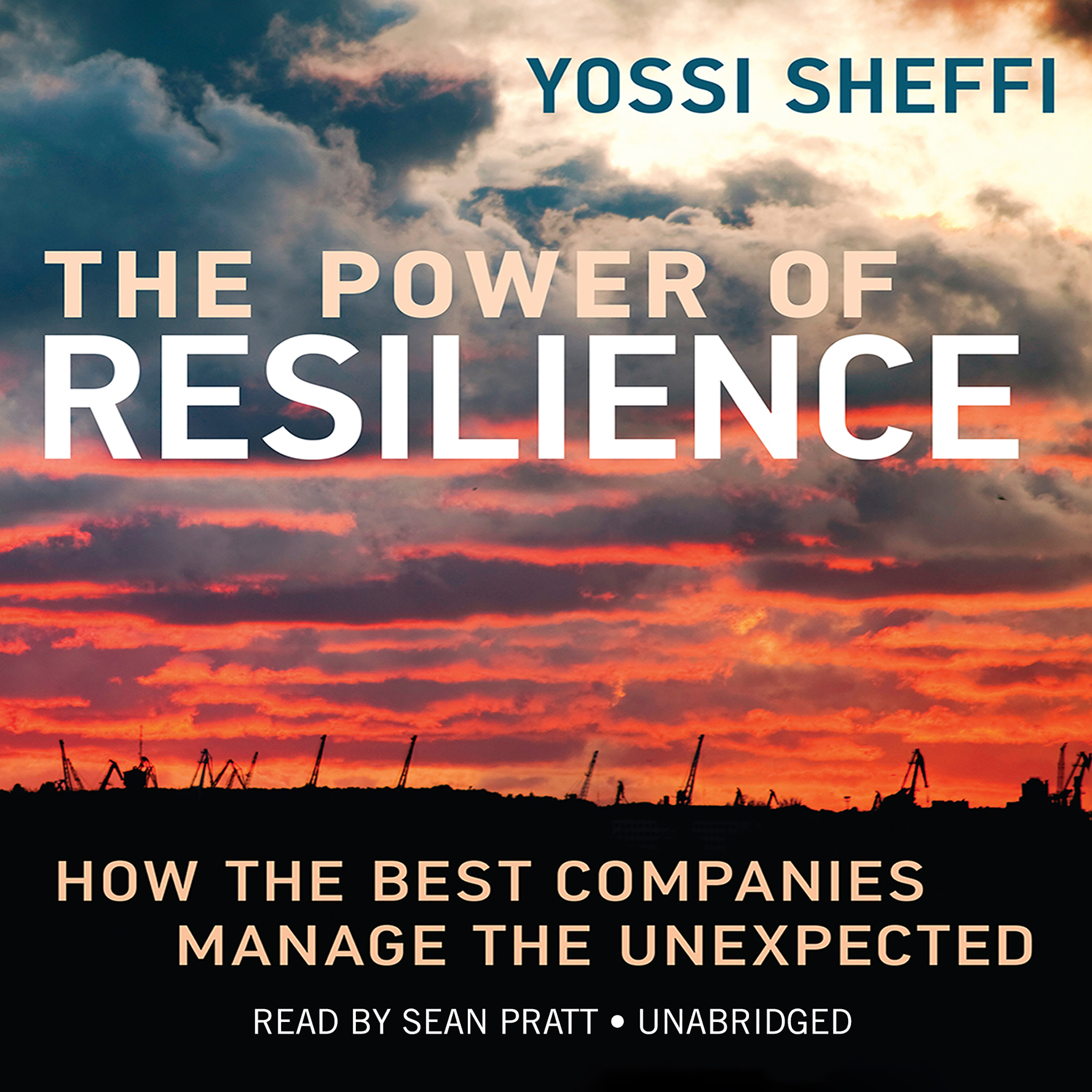 Printable The Power of Resilience: How the Best Companies Manage the Unexpected Audiobook Cover Art