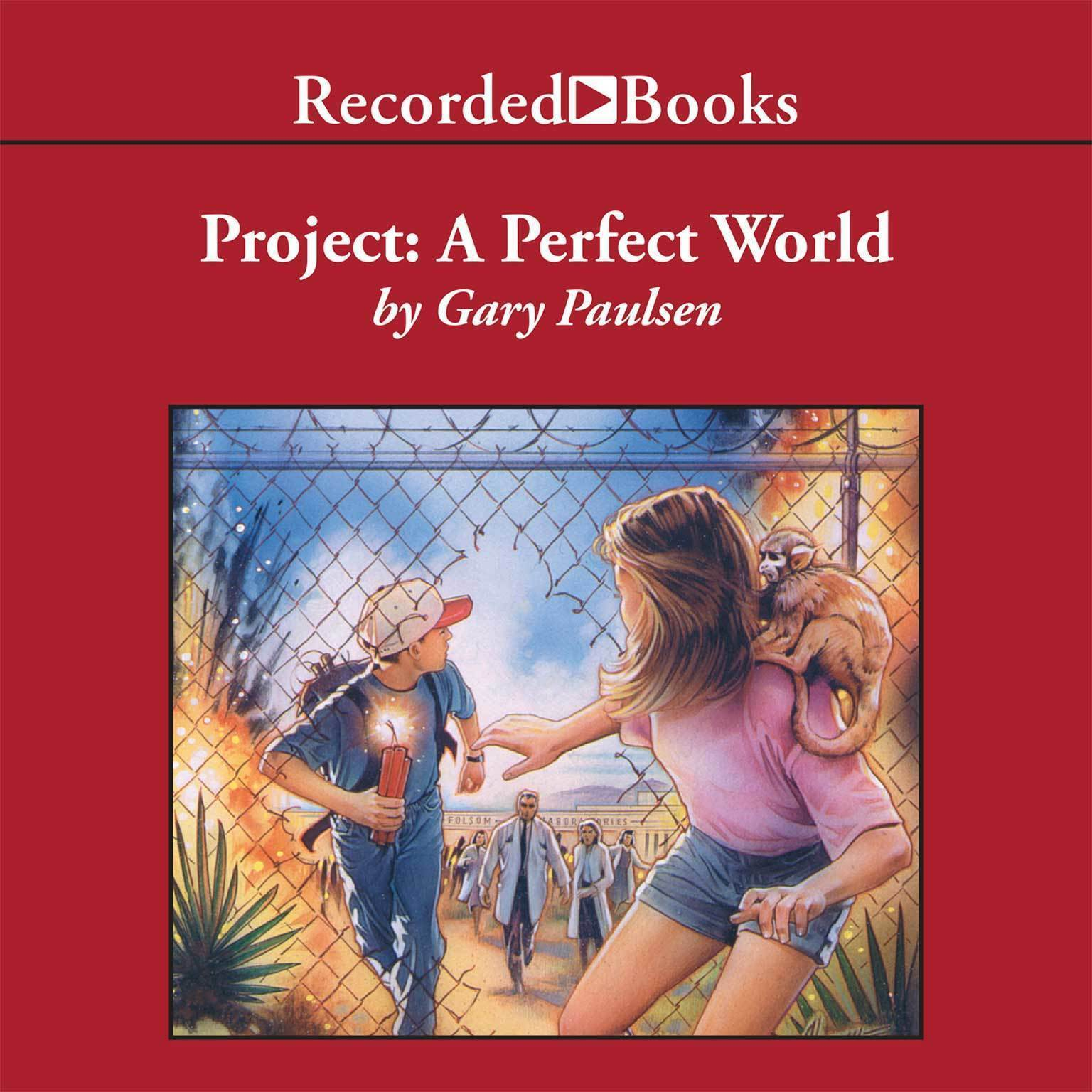Printable Project: A Perfect World Audiobook Cover Art