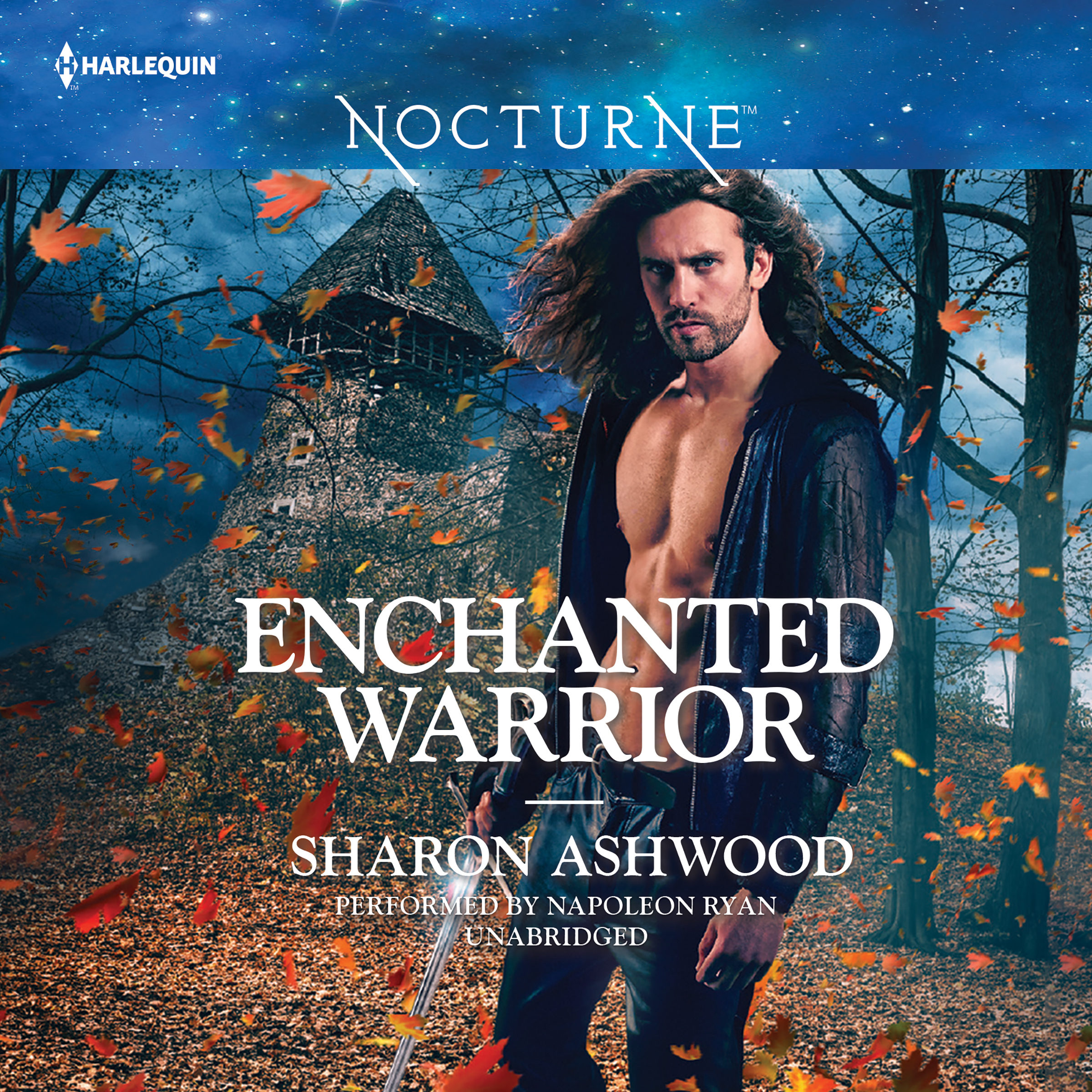 Printable Enchanted Warrior Audiobook Cover Art