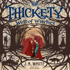 The Thickety #3: Well of Witches Audiobook, by J. A. White