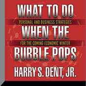 What to Do When the Bubble Pops: Personal and Business Strategies for the Coming Economic Winter Audiobook, by Harry S. Dent, Harry S. Dent