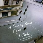 A Country Road, A Tree: A Novel Audiobook, by Jo Baker
