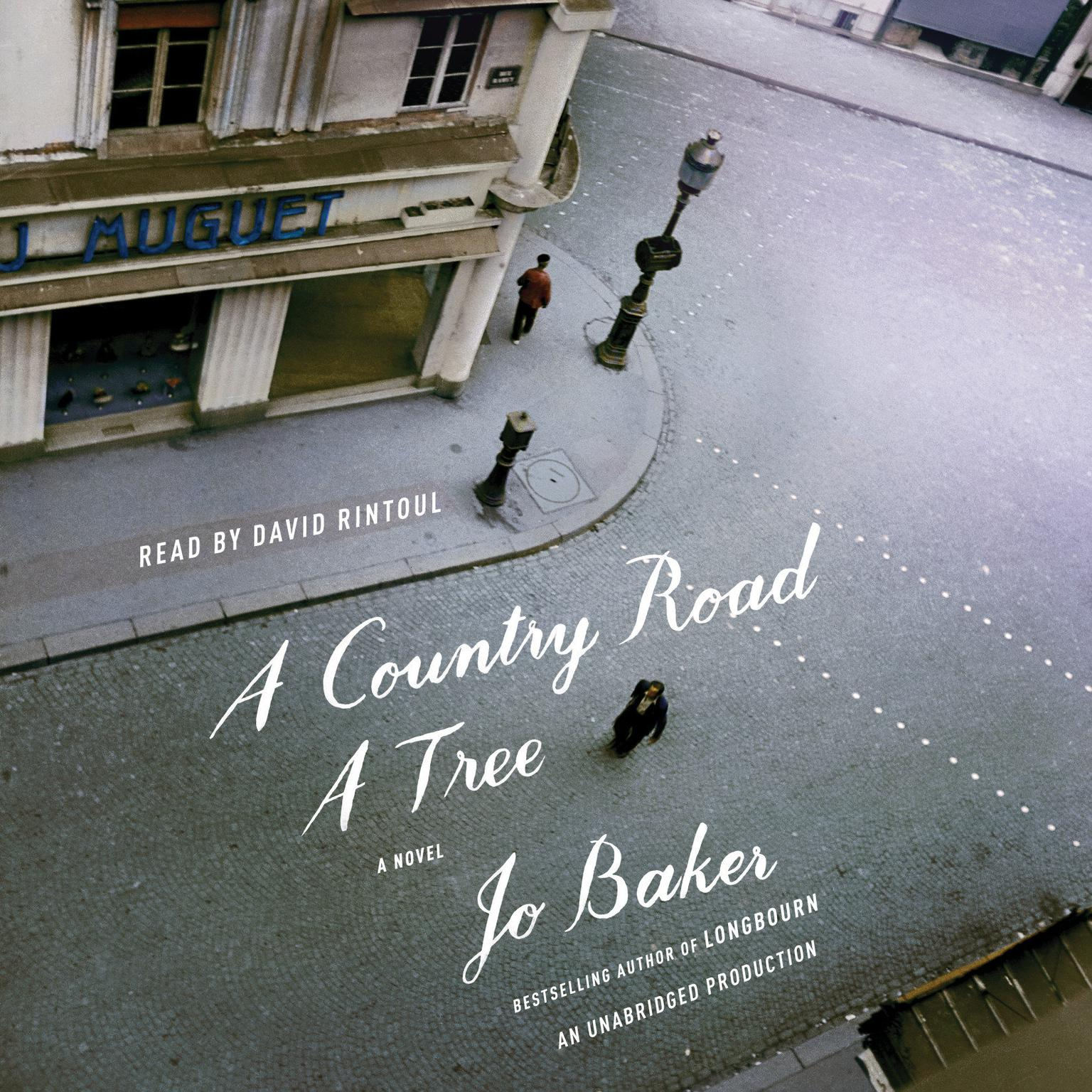 Printable A Country Road, A Tree: A Novel Audiobook Cover Art