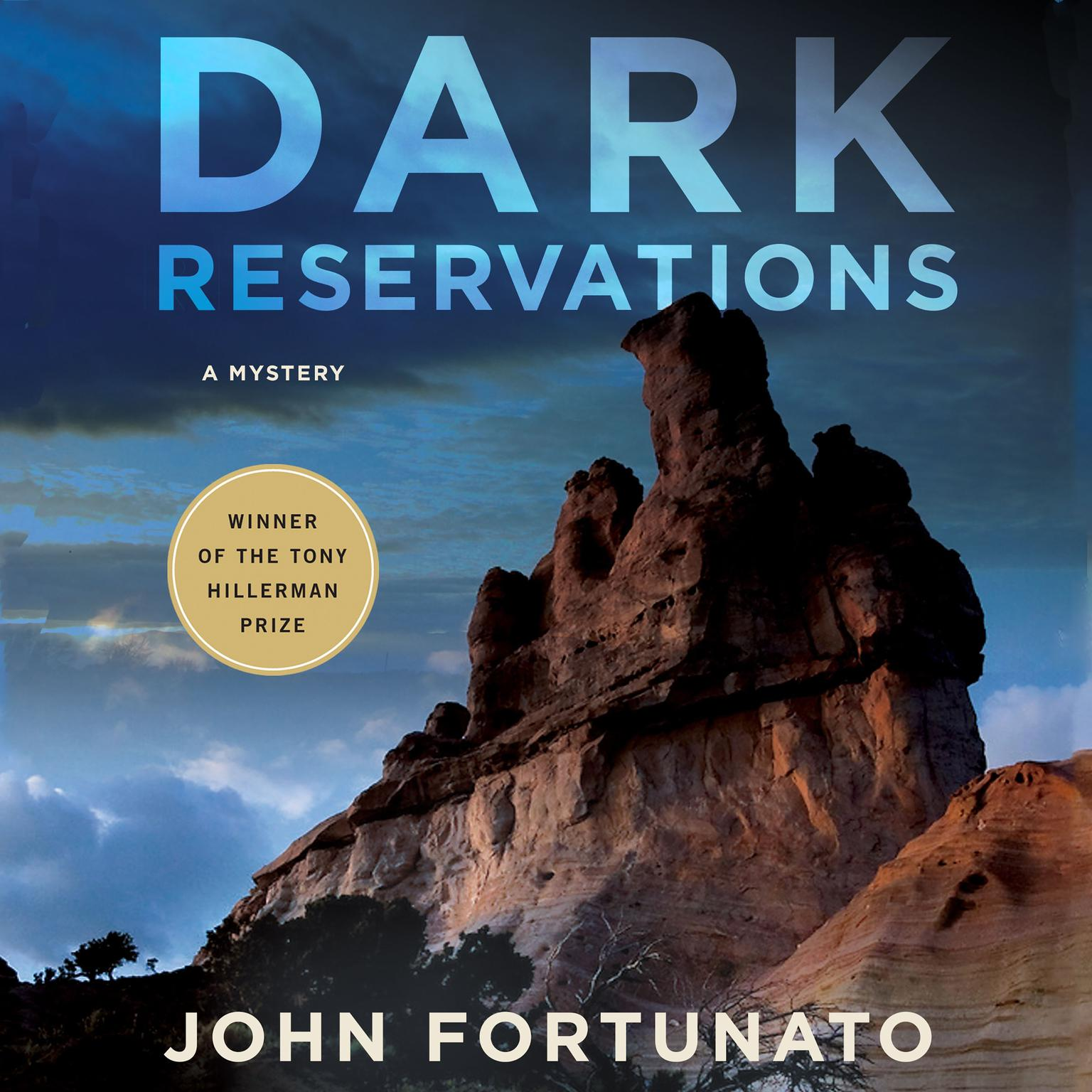 Printable Dark Reservations: A Mystery Audiobook Cover Art