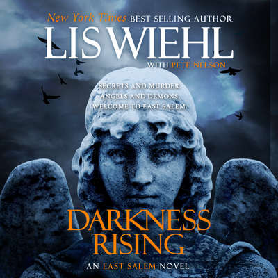 Darkness Rising Audiobook, by Lis Wiehl