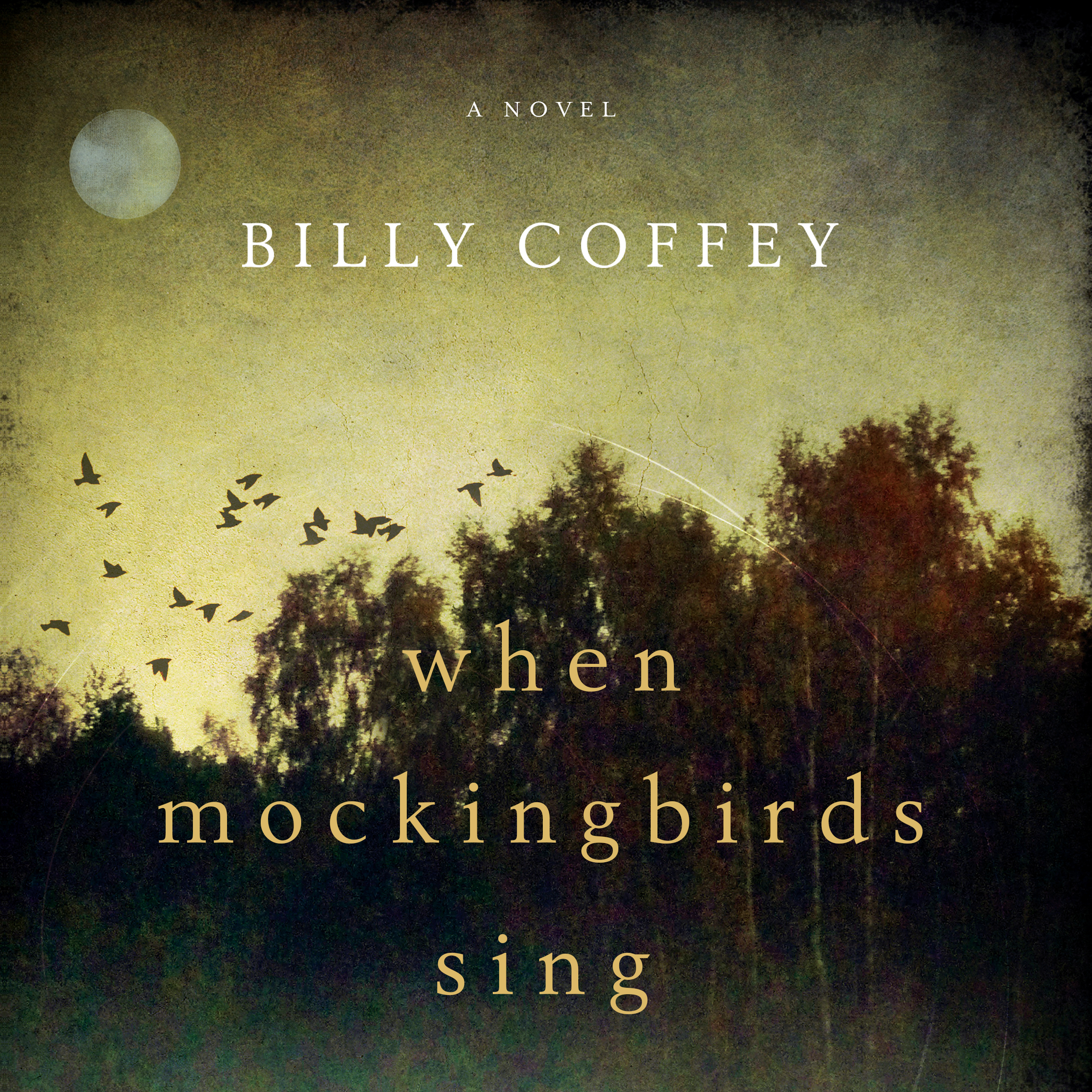 Printable When Mockingbirds Sing Audiobook Cover Art