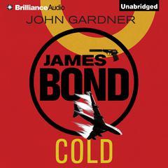 Cold Audiobook, by John Gardner