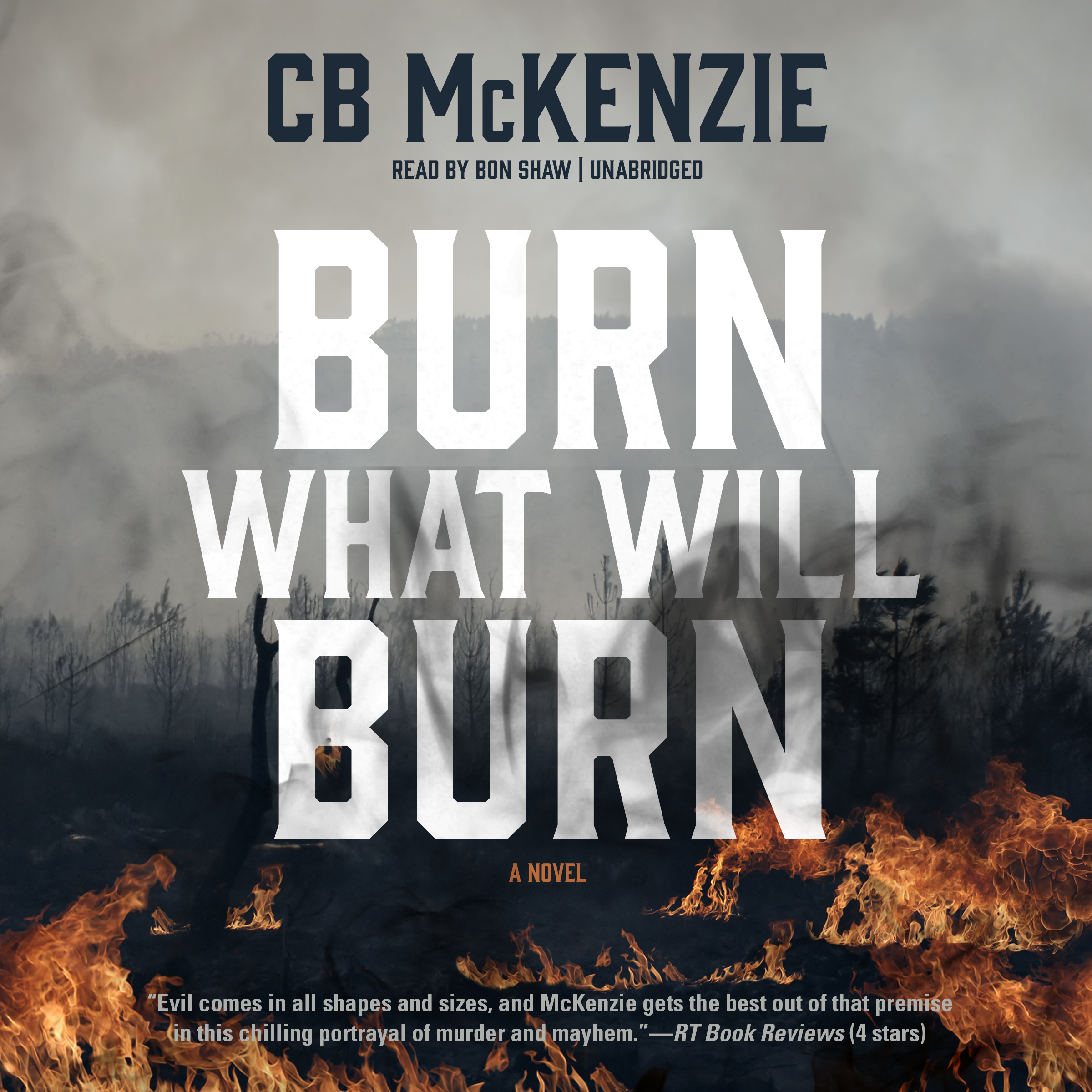 Printable Burn What Will Burn Audiobook Cover Art