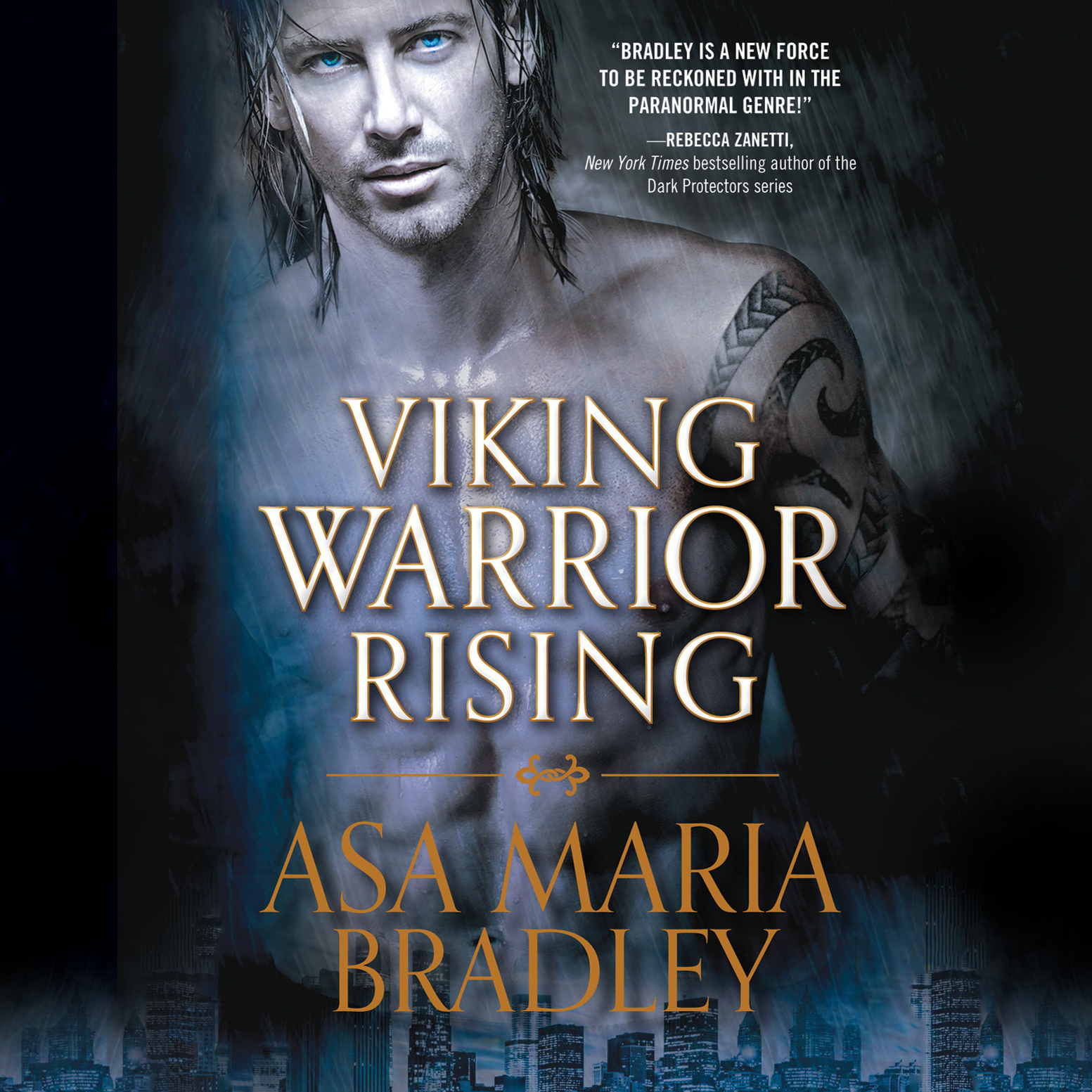 Printable Viking Warrior Rising Audiobook Cover Art