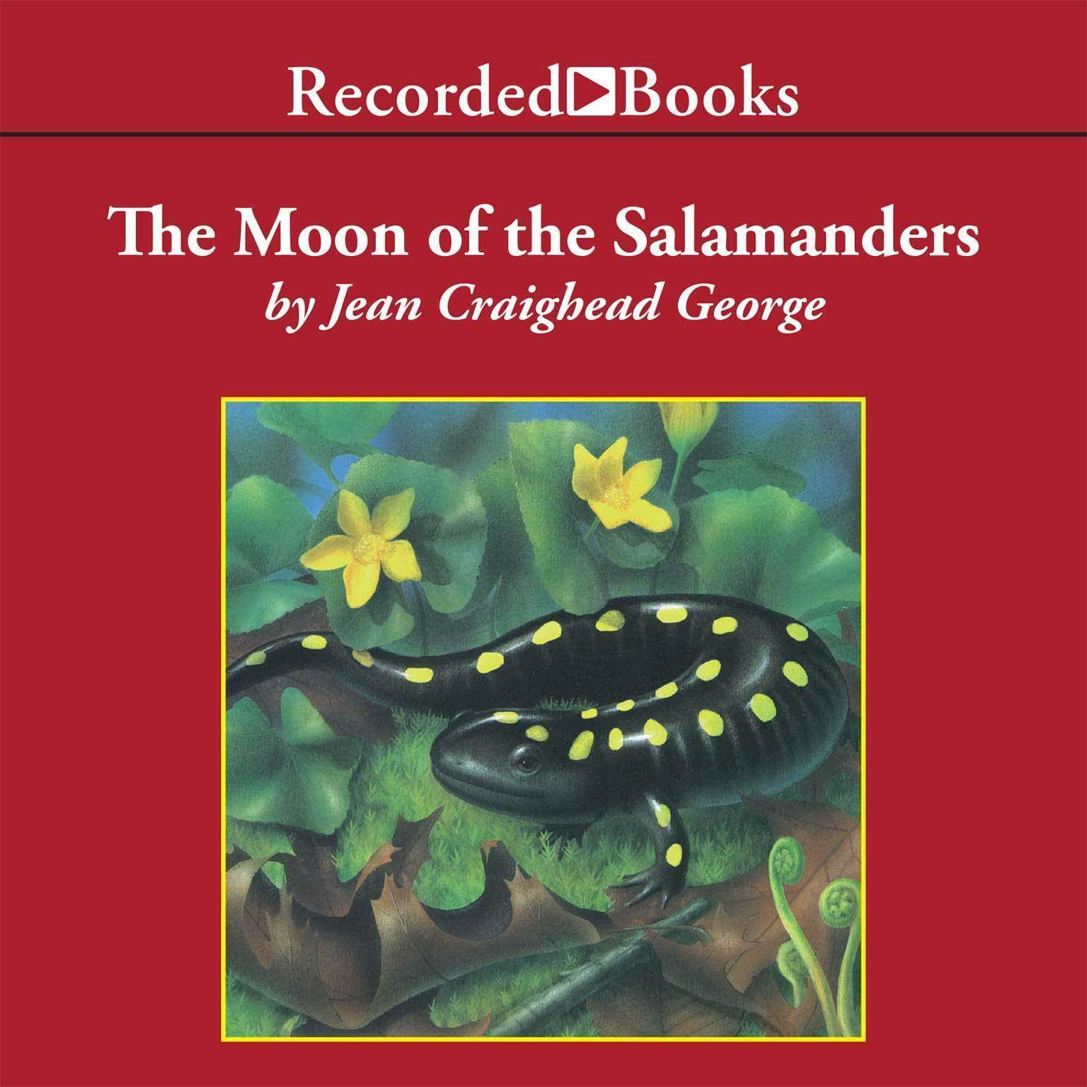 Printable The Moon of the Salamanders Audiobook Cover Art