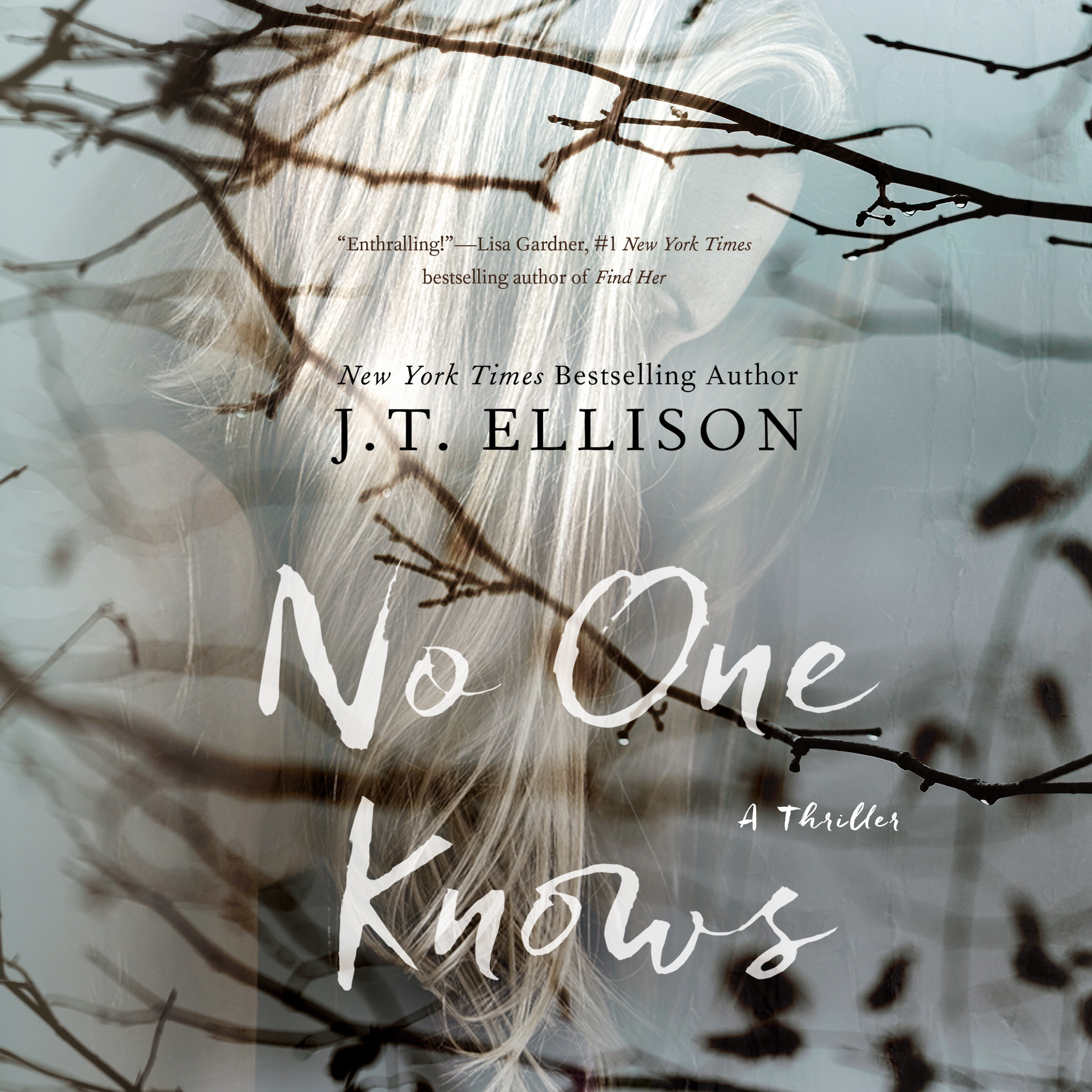 Printable No One Knows Audiobook Cover Art